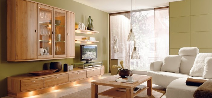 modern sophisticated living room