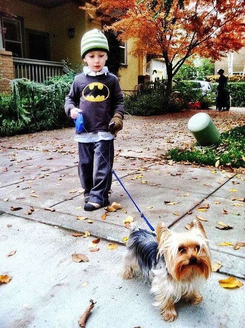 Donovan walking Fox the dog
