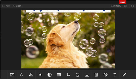 App PhotoStudio photo editor for images & graphics online - RedcoolMedia