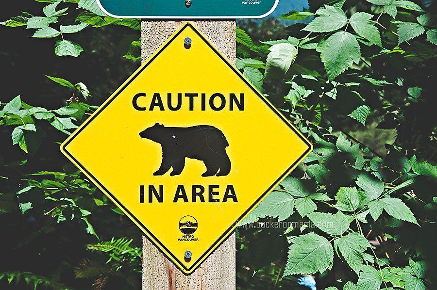 Mon - Aug 18, 2014 photo Bear-caution-1_zps4ad83ac2.jpg