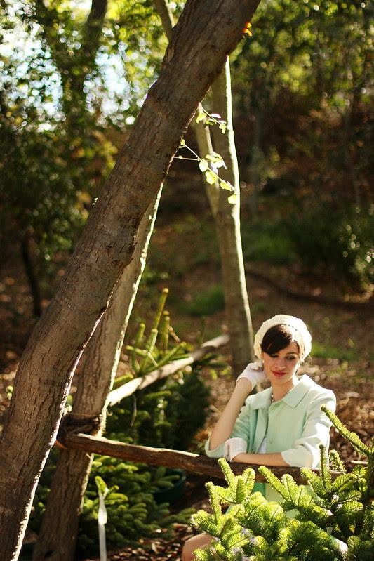 treefarm 053