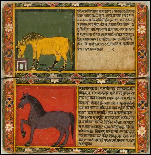Nepal Horse Book e