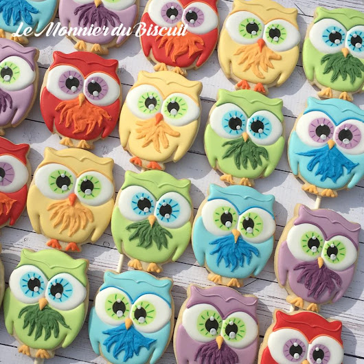 Rainbow of Owls