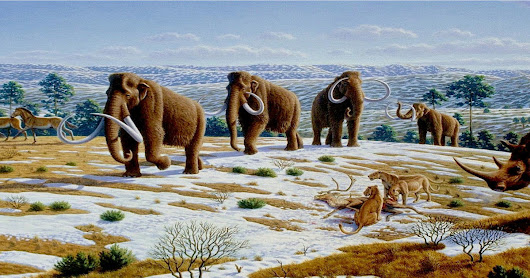 Woolly Mammoth Revival