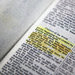 Dissolvable filmstrips of buprenorphine were melted onto the pages of a Kentucky inmate's Bible for later ingestion.