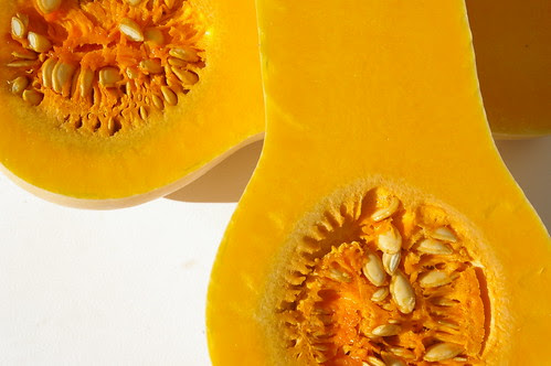 Butternut Squash by Patent and the Pantry