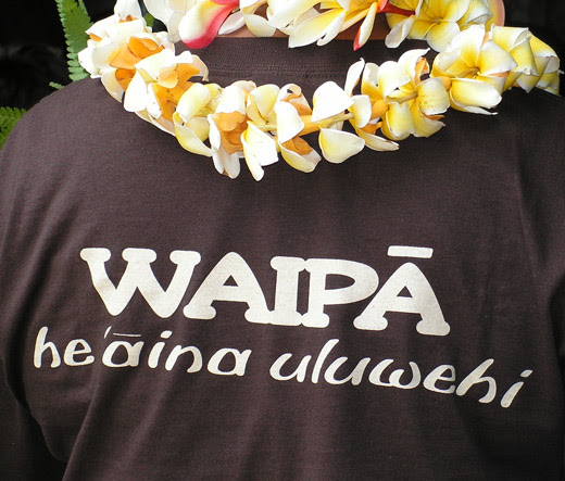Giving Thanks: Waipa Foundation - Tambor • Keep your Life in Rhythm!