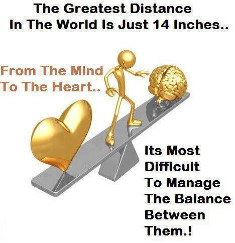 Quotes About Mind And Heart Quotes