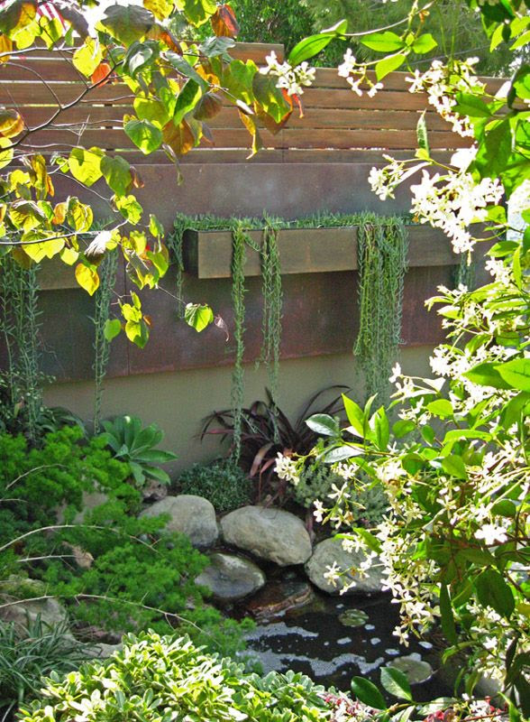Landscaping ideas for my backyard