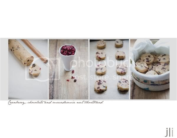 chocolate,cranberry,macadamia,shortbread. jillian leiboff imaging,sydney wedding and portrait photography,food photography,baking