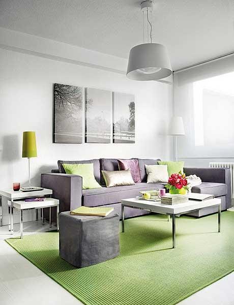 Interior Design For Male Apartment