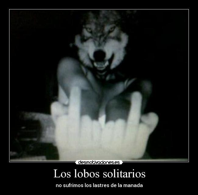 Los Lobos Solitarios Desmotivaciones