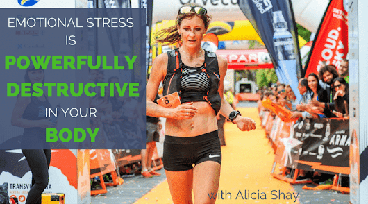 Alicia Shay- Emotional Stress is Powerfully Destructive in Your Body