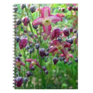 Epimedium Flowers fuji_notebook