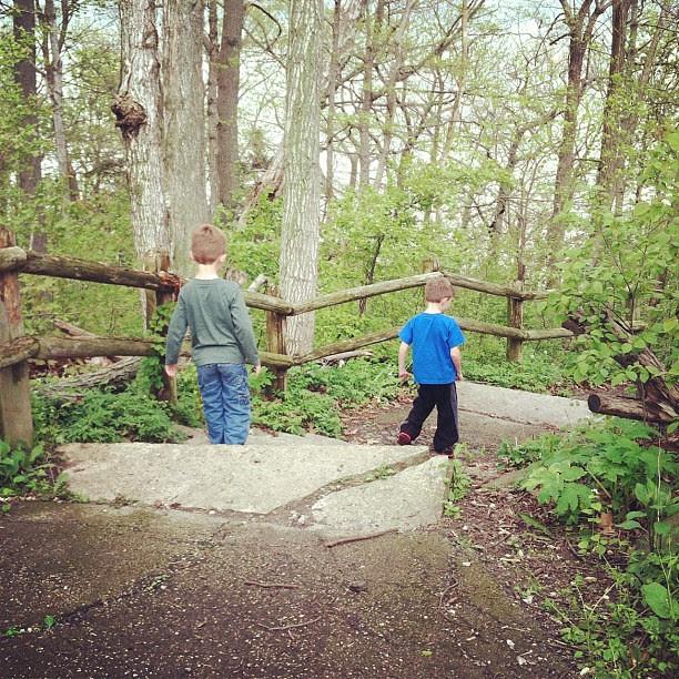 Nature walk :)