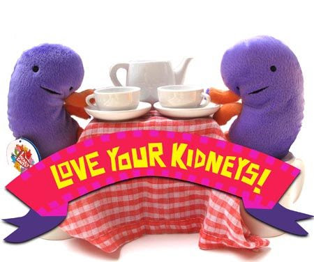Does The Kidney Disease Solution Work?