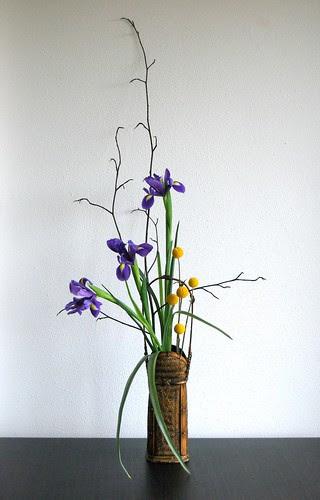 Ikebana 'Iris in autumn' by Otomodachi