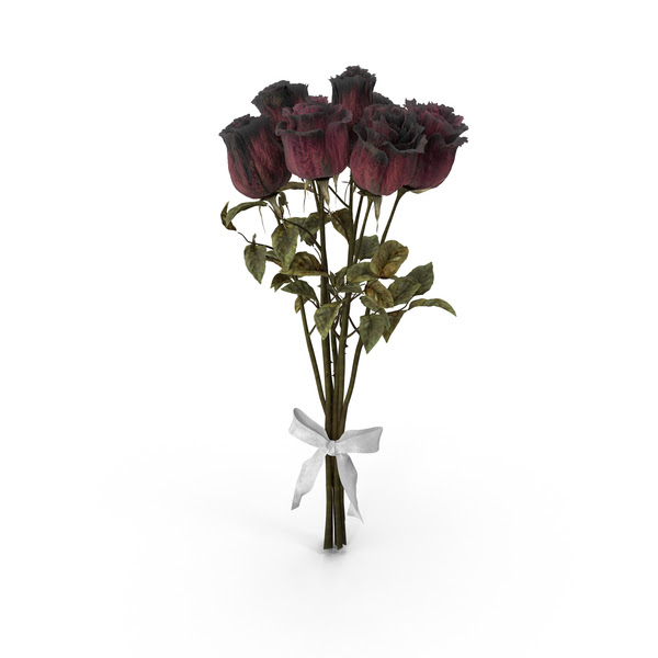 Bouquet Of Dried Roses Png Images Psds For Download Pixelsquid