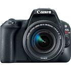 Canon EOS Rebel SL2 24.2 MP SLR - Black - EF-S 18-55mm IS STM Lens
