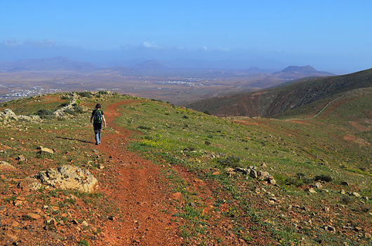 Finding rural life on frustrating Fuerteventura |