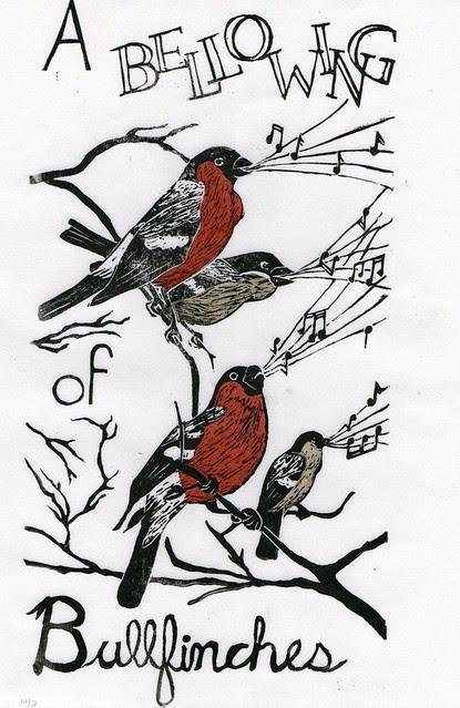 bullfinches686