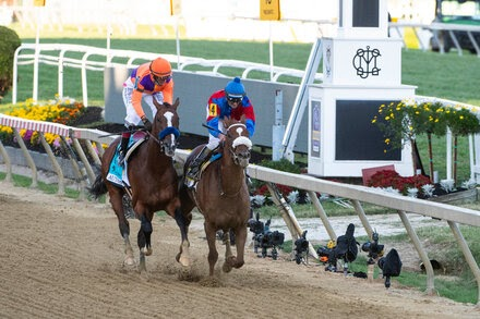 Swiss Skydiver, With a Last-Minute Jockey, Wins the Preakness Stakes