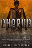 The Killing: Mission 4 (Cherub Series)