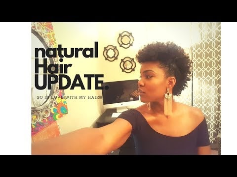 Natural Hair Update| Twist Out on Natural Hair
