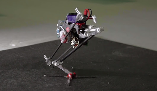 Leaping Robot Inspired by Bush Babies and Parkour