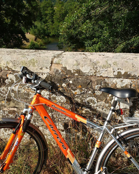 Looking for #trout and #kingfishers on Burrington bridge. Ideal for a #summer #cycle ride. http://ift.tt/1iY4KfS
