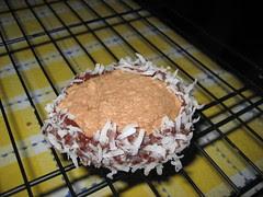 chocolate mint coconut cookie sandwich
