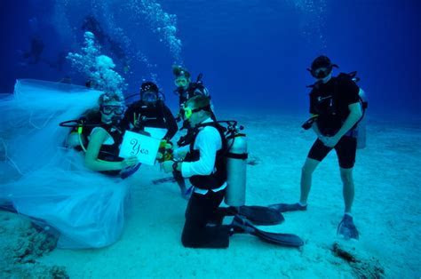 Dive in to Your Scuba Wedding in South Florida   Partyspace