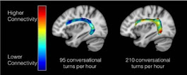 Adult-Child Conversations Strengthen Language Regions of Developing Brain