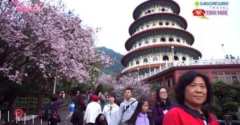 VALIDI TẬP 22 | VALI NEWS - Du lịch khắp thế giới mùa hoa anh đào