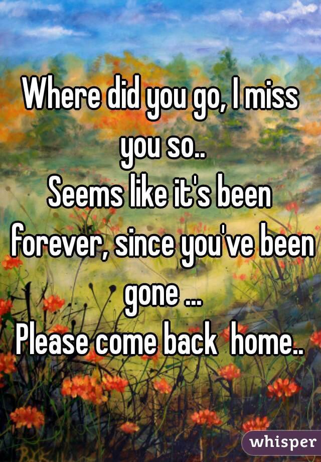 Where Did You Go I Miss You So Seems Like Its Been Forever