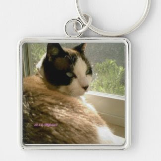 sunning kitty leave me alone I'm tanning Silver-Colored Square Keychain