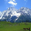Kashmir Holiday Vacation and Tour Packages