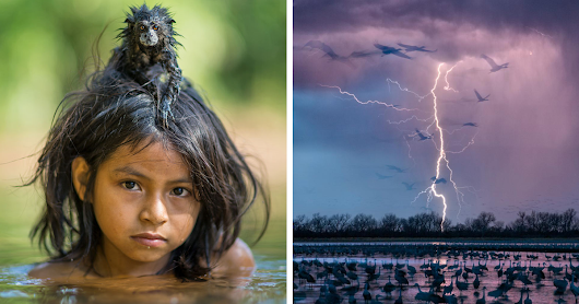 50+ Of The Best Images Of The Year Announced By National Geographic