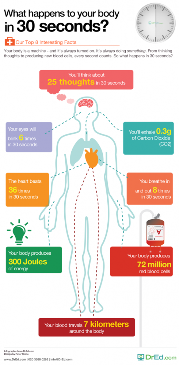 What Happens In Your Body In 30 Seconds?