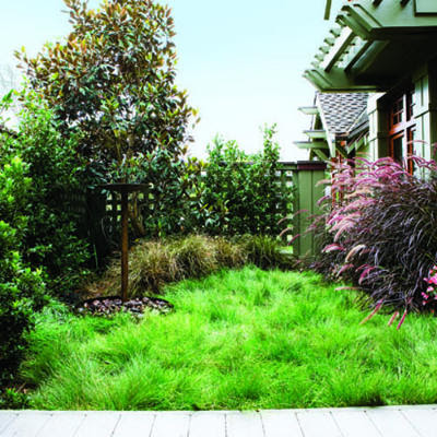 Savvy Housekeeping » Attractive Lawn-less Front Yards