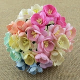 Kwiaty Wiśni - białe - 5szt
