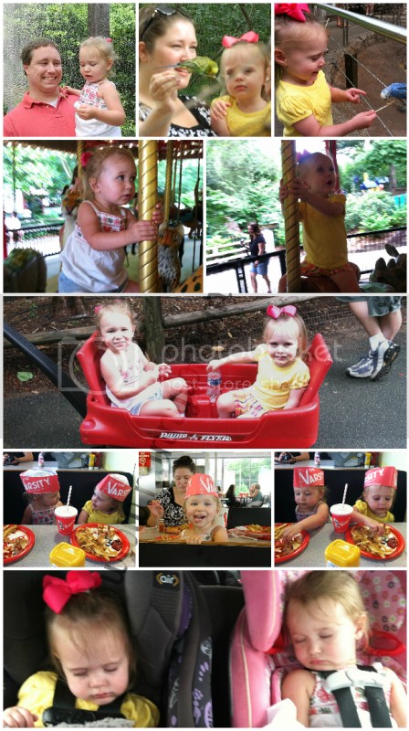 Atlanta Zoo and Varsity Wordless Wednesday