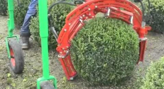 A Machine That Trims Your Shrubs Into Perfect Spheres - Digg