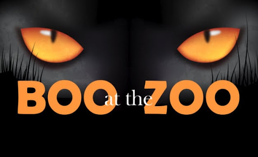 Celebrate Halloween at the Scovill Zoo