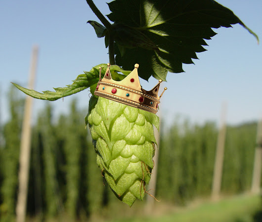 One Nation, Under Hops: A Geographical Evolution of IPA