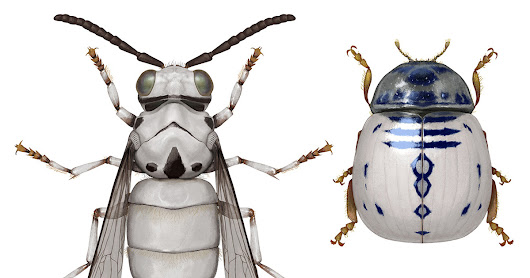 Imagined Insects Camouflaged as Star Wars Characters by Illustrator Richard Wilkinson