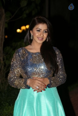 Nikki Galrani New Photos - 31 of 36