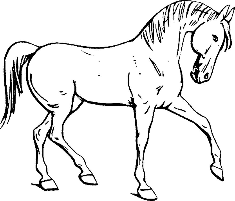 58 Free Printable Coloring Pages For Adults Horses , Free HD Download