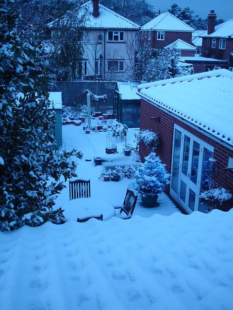 December snowfall (7)