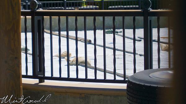 Disneyland Resort, Disney California Adventure, Luigi, Flying, Tires, Refurbishment, Refurbish, Refurb, Cars Land